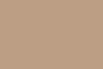 560 Autumn Leaf Gutter Color